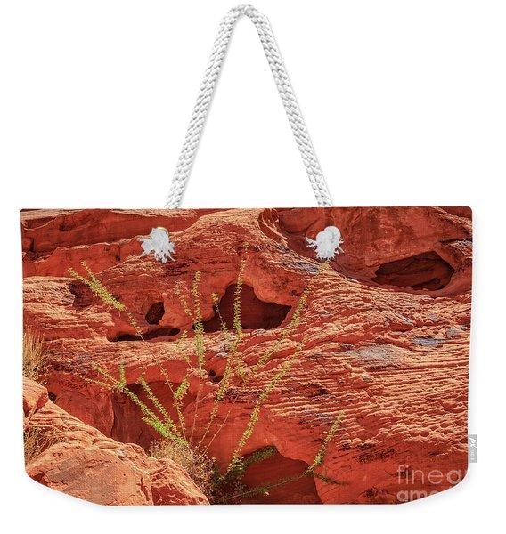 Valley Of Fire Nevada Weekender Tote Bag