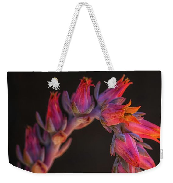 Weekender Tote Bag featuring the photograph Vibrant Arc by Laura Roberts