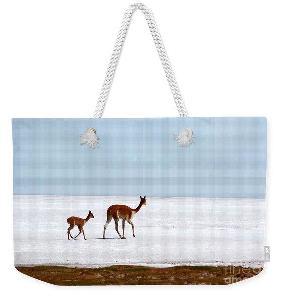 Vicunas On Shore Of The Uyuni Salt Flats Bolivia Weekender Tote Bag