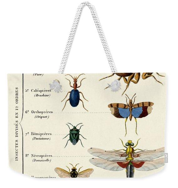 Vintage Insects Print Weekender Tote Bag