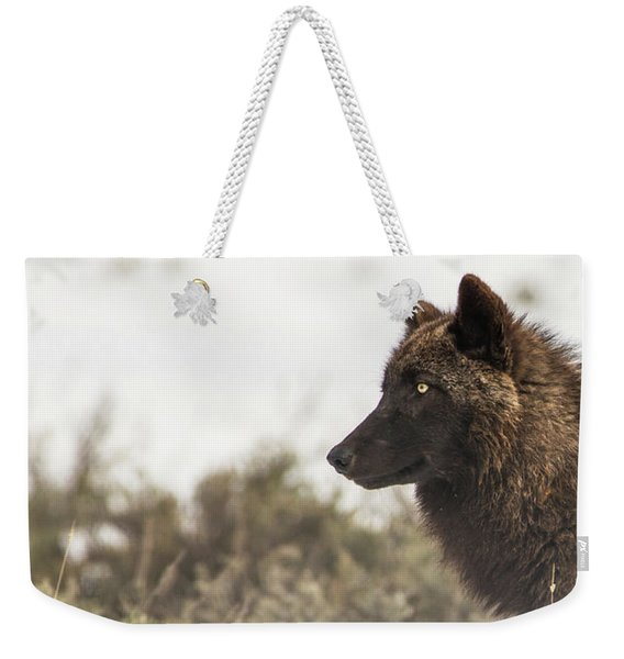 Weekender Tote Bag featuring the photograph W11 by Joshua Able's Wildlife