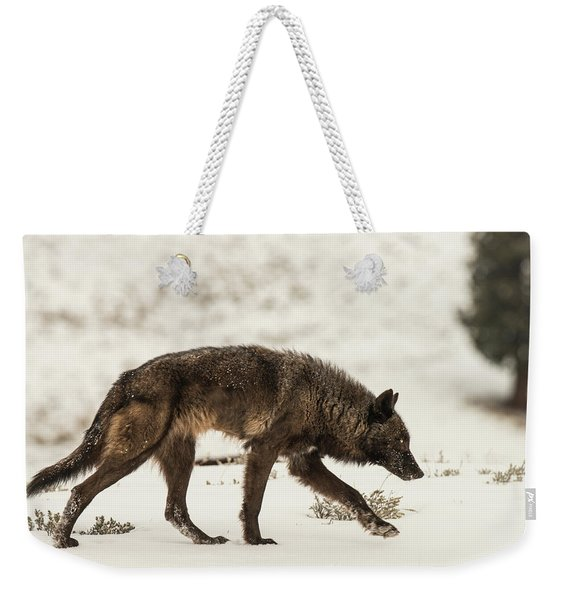 Weekender Tote Bag featuring the photograph W13 by Joshua Able's Wildlife