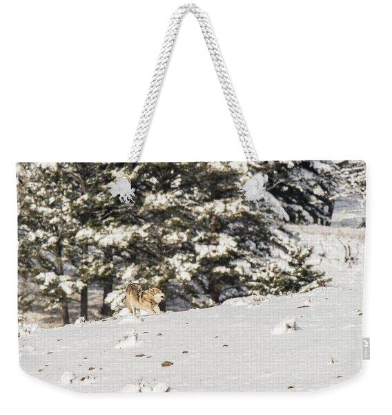 W14 Weekender Tote Bag