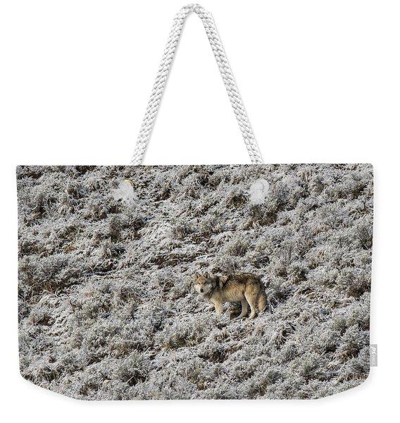 W17 Weekender Tote Bag