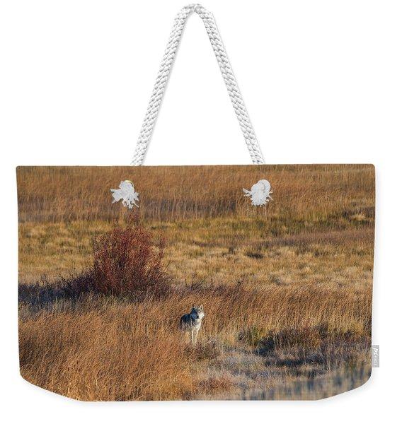 W2 Weekender Tote Bag