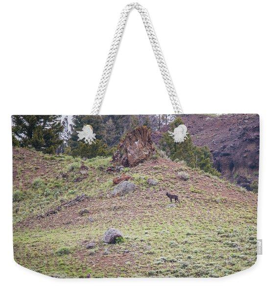 W22 Weekender Tote Bag