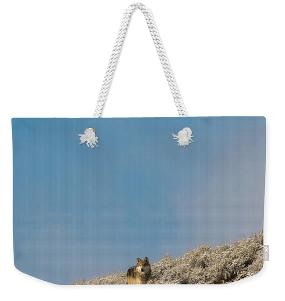Weekender Tote Bag featuring the photograph W24 by Joshua Able's Wildlife