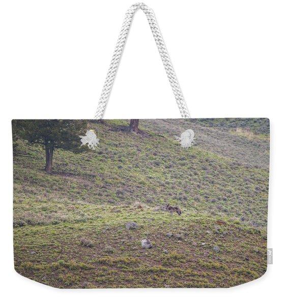 W25 Weekender Tote Bag