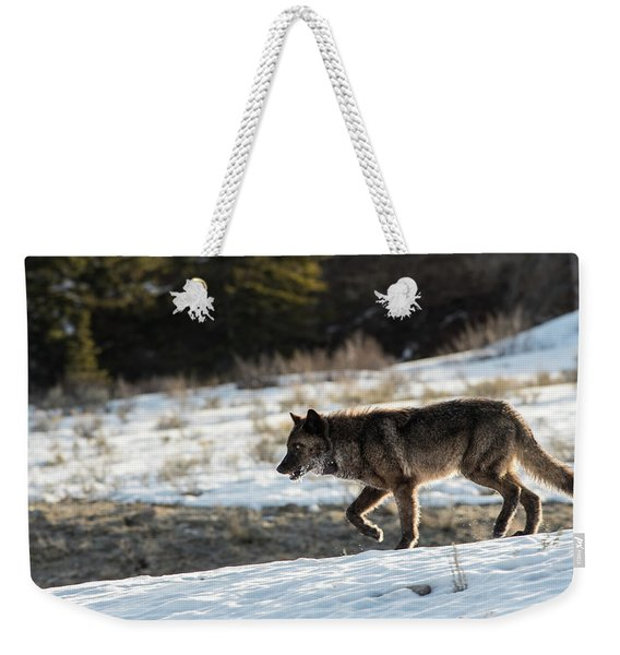Weekender Tote Bag featuring the photograph W27 by Joshua Able's Wildlife