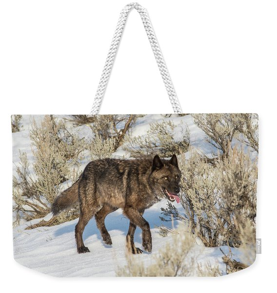 Weekender Tote Bag featuring the photograph W28 by Joshua Able's Wildlife