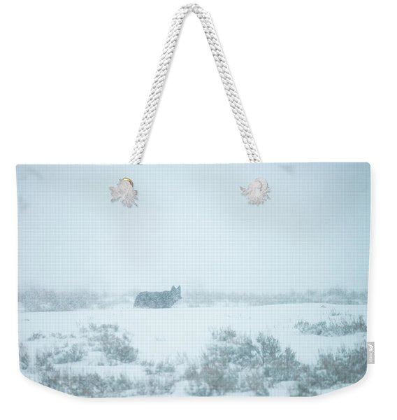 Weekender Tote Bag featuring the photograph W29 by Joshua Able's Wildlife