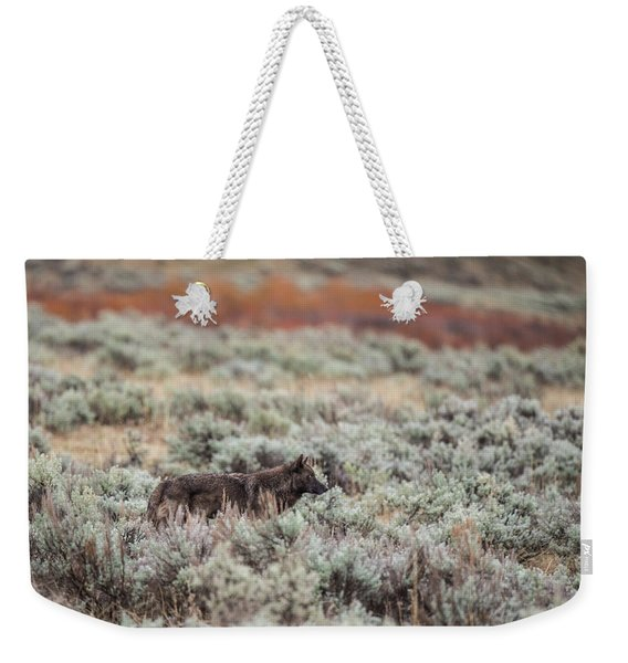 Weekender Tote Bag featuring the photograph W30 by Joshua Able's Wildlife