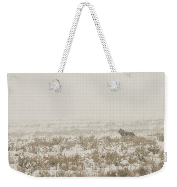 Weekender Tote Bag featuring the photograph W34 by Joshua Able's Wildlife