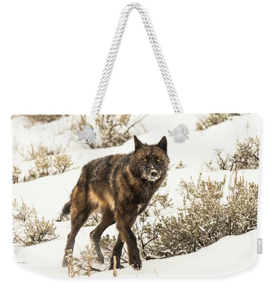Weekender Tote Bag featuring the photograph W38 by Joshua Able's Wildlife