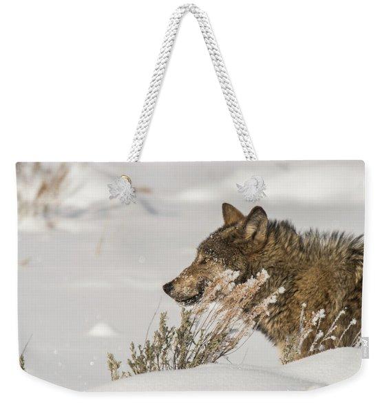 W39 Weekender Tote Bag