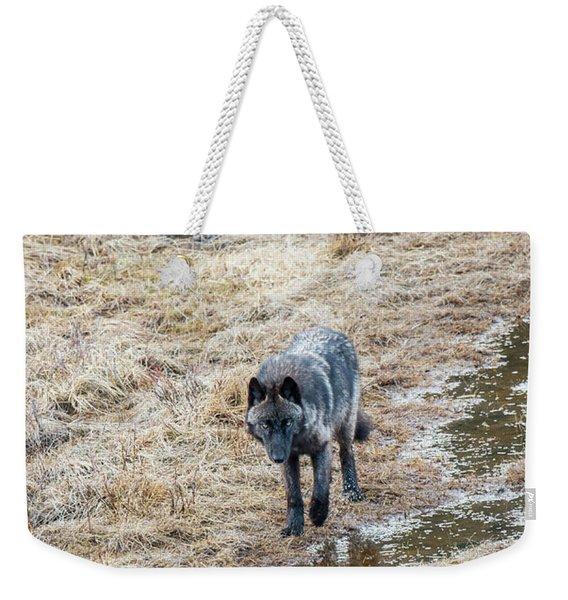 W51 Weekender Tote Bag