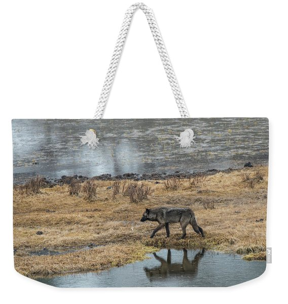Weekender Tote Bag featuring the photograph W53 by Joshua Able's Wildlife