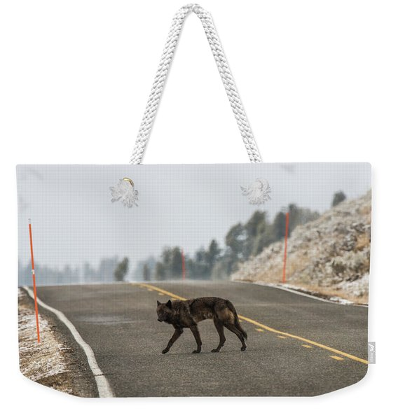 Weekender Tote Bag featuring the photograph W55 by Joshua Able's Wildlife