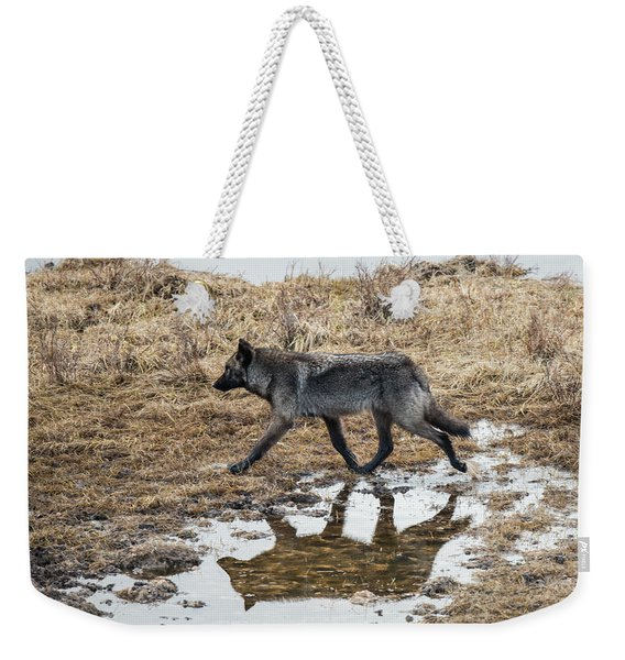 Weekender Tote Bag featuring the photograph W60 by Joshua Able's Wildlife