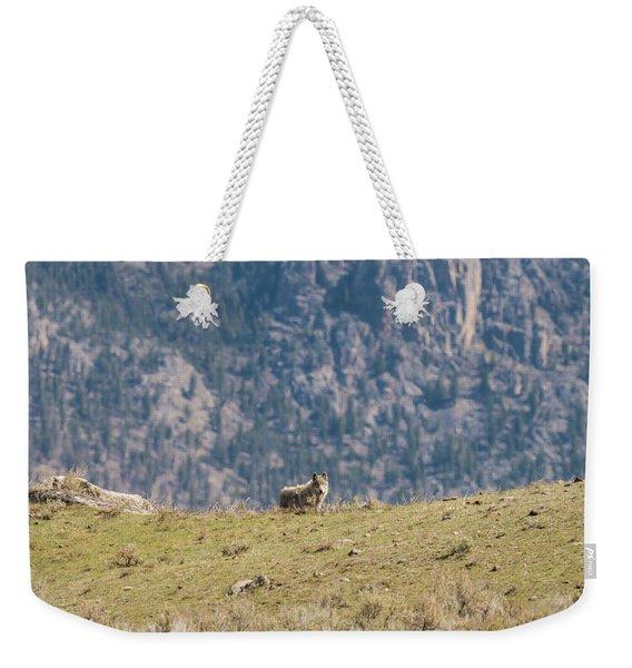 W62 Weekender Tote Bag