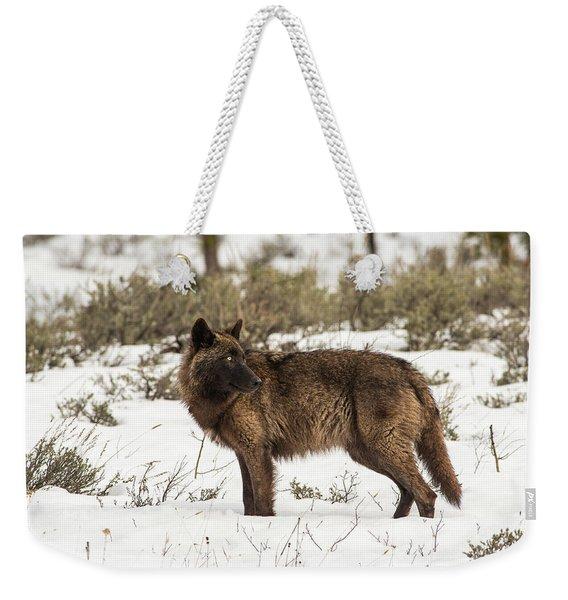 W9 Weekender Tote Bag
