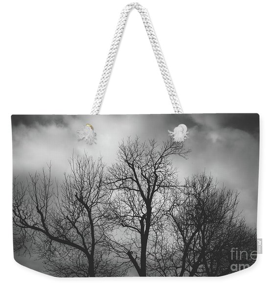 Weekender Tote Bag featuring the photograph Waiting Bird by Dheeraj Mutha
