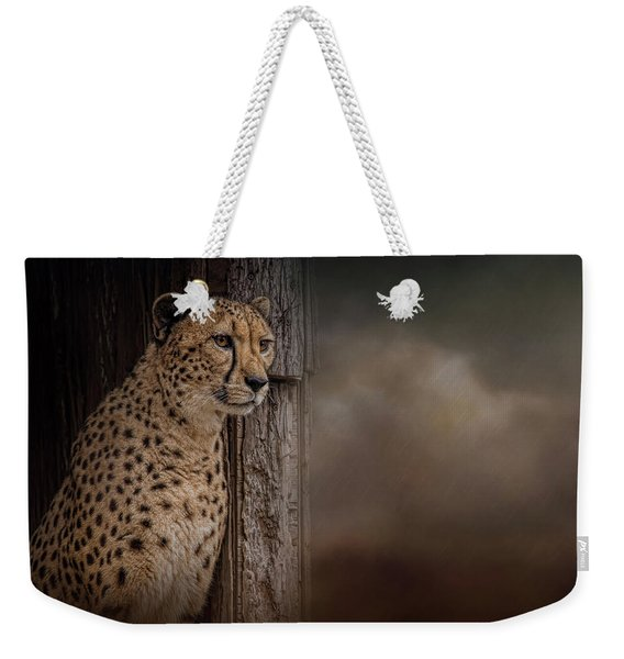 Waiting Out The Storm Weekender Tote Bag