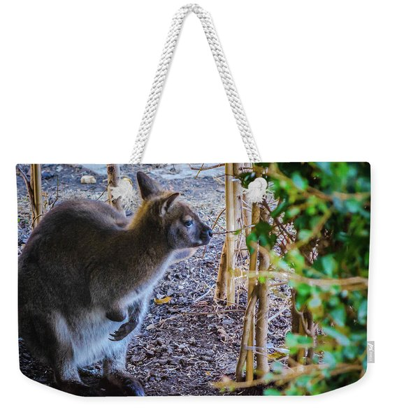 Wallaby Weekender Tote Bag