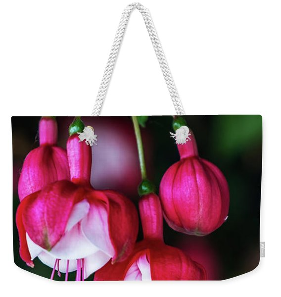 Weekender Tote Bag featuring the photograph Wallpaper Flower by Dheeraj Mutha