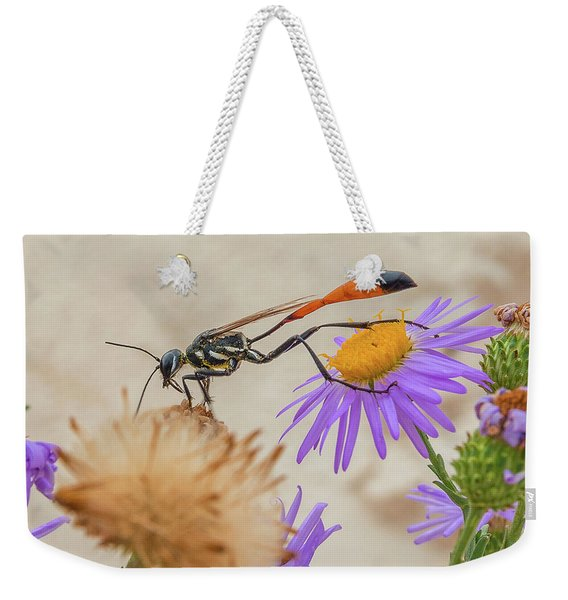 Wasp At White Sands Weekender Tote Bag
