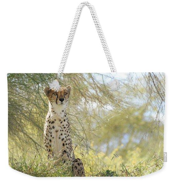 Watchful Eyes Weekender Tote Bag