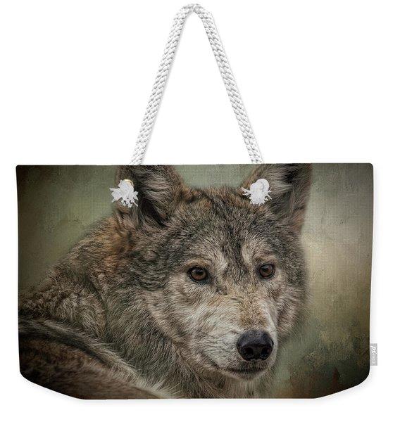 Watchful Weekender Tote Bag