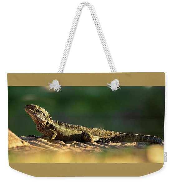 Weekender Tote Bag featuring the photograph Water Dragon Lizard Outdoors by Rob D Imagery