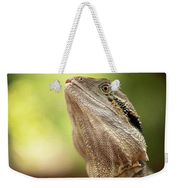 Water Dragon. Weekender Tote Bag