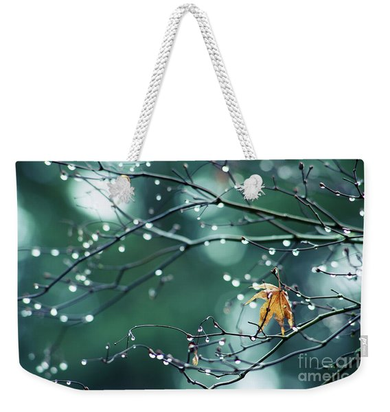 Weekender Tote Bag featuring the photograph Water Droplets On Twigs Vii by Charmian Vistaunet