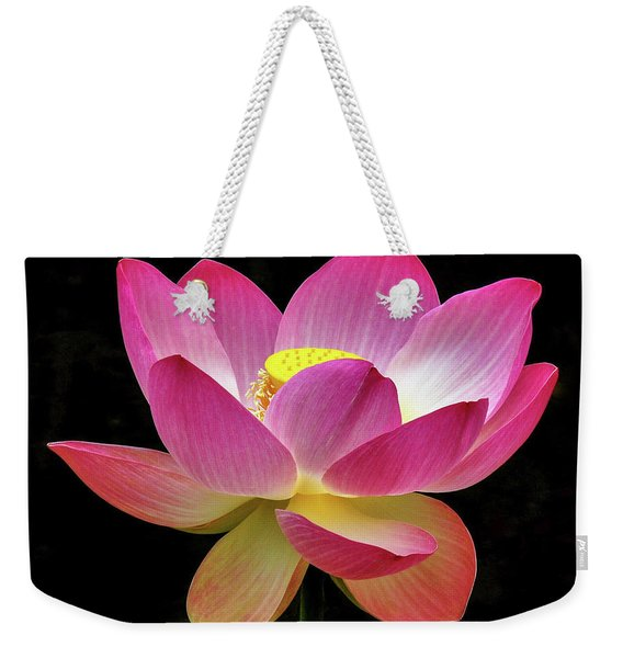 Water Lily In The Light Weekender Tote Bag