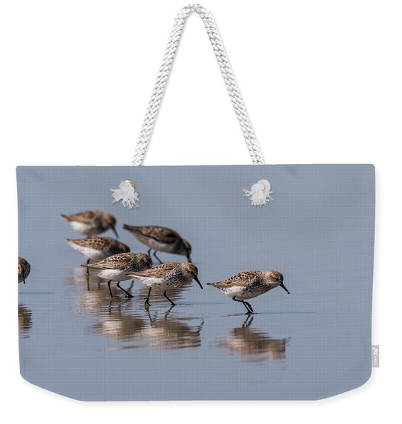 Western Sandpipers And Reflection Weekender Tote Bag