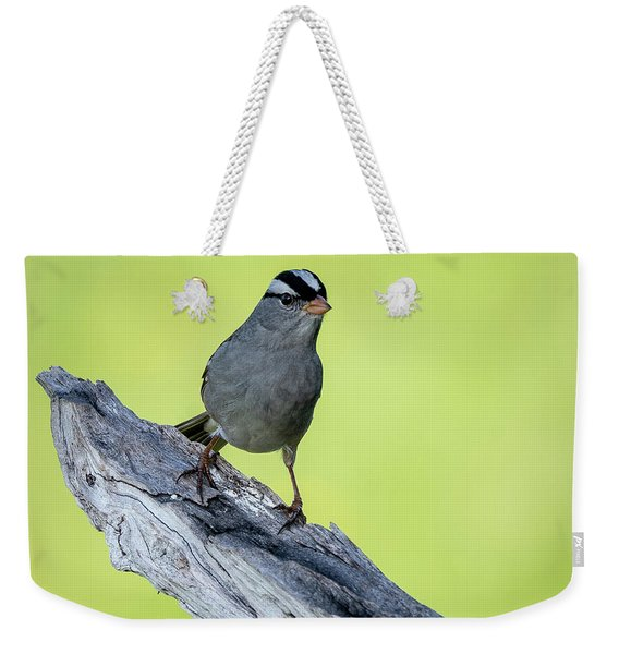 White Crowned Sparrow 1 Weekender Tote Bag