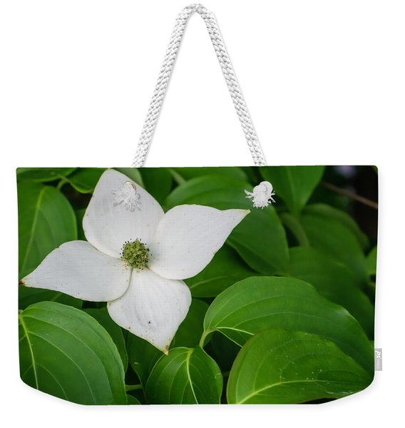 White Dogwood Flower  Weekender Tote Bag