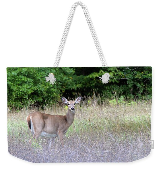 White Tale Deer Weekender Tote Bag