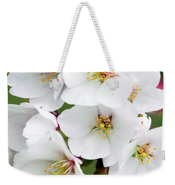 White Yoshino Cherry Blossoms 19-3 Weekender Tote Bag