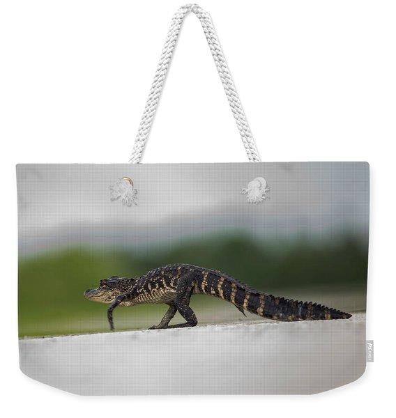 Why Did The Gator Cross The Road? Weekender Tote Bag