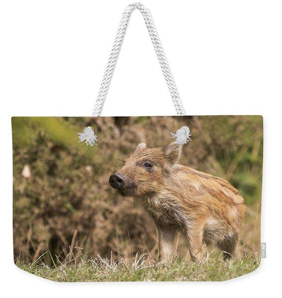Wild Boar Humbug Weekender Tote Bag