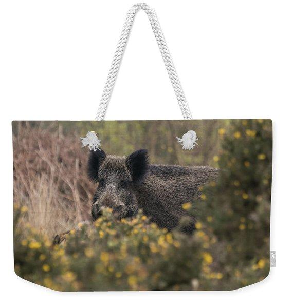 Wild Boar Sow Weekender Tote Bag