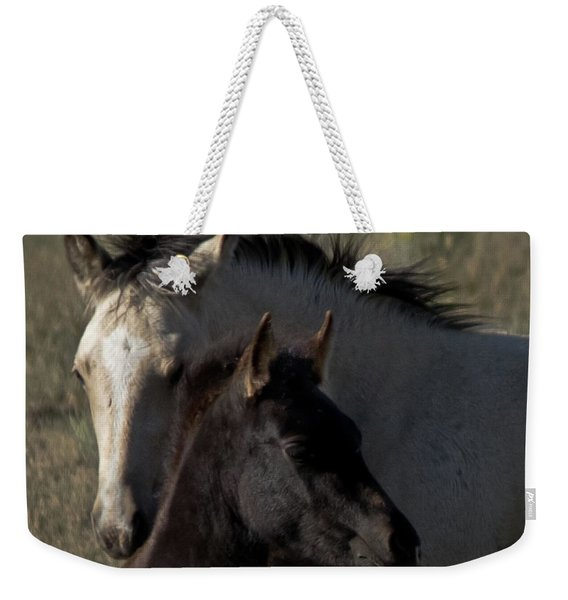 Weekender Tote Bag featuring the photograph Wild Mustangs Of New Mexico 4 by Catherine Sobredo