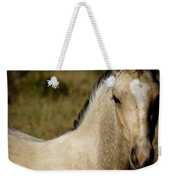 Weekender Tote Bag featuring the photograph Wild Mustangs Of New Mexico 5 by Catherine Sobredo
