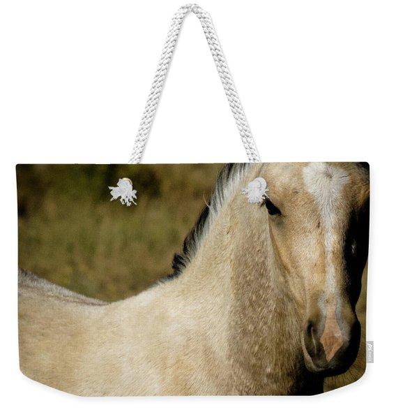 Wild Mustangs Of New Mexico 5 Weekender Tote Bag