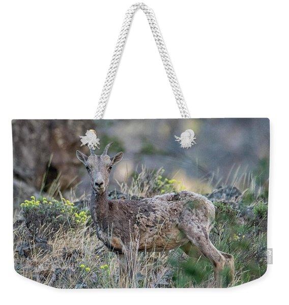 Wildflower Ewe Weekender Tote Bag