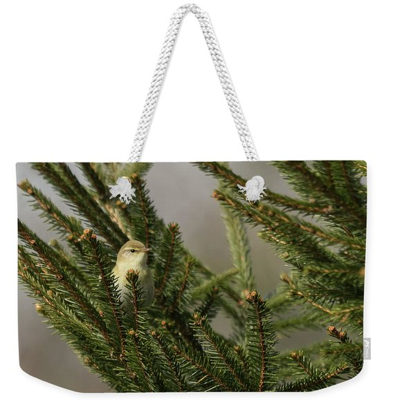 Willow Warbler Weekender Tote Bag