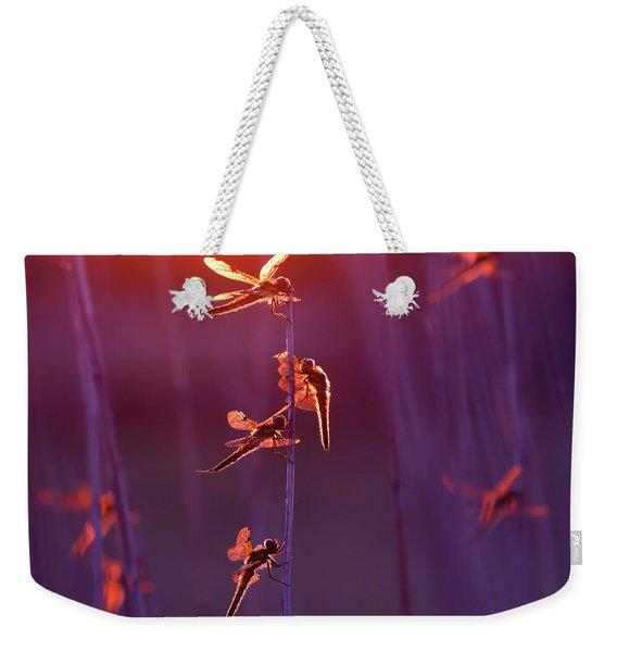 Winged Wonders - Dragonflies At Sunset Weekender Tote Bag